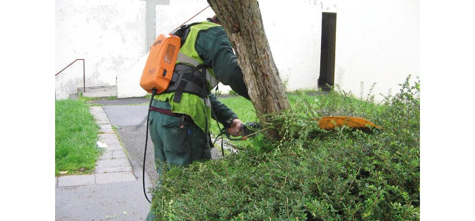 Terenvi entretien et gestion des espaces verts for Entretien espace vert entreprise